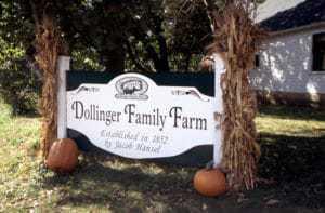 dollingerfamilyfarm